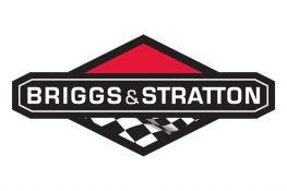 Briggs-Stratton-logo-1024x683